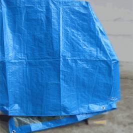 Lonas Plástica Azul 10×10.